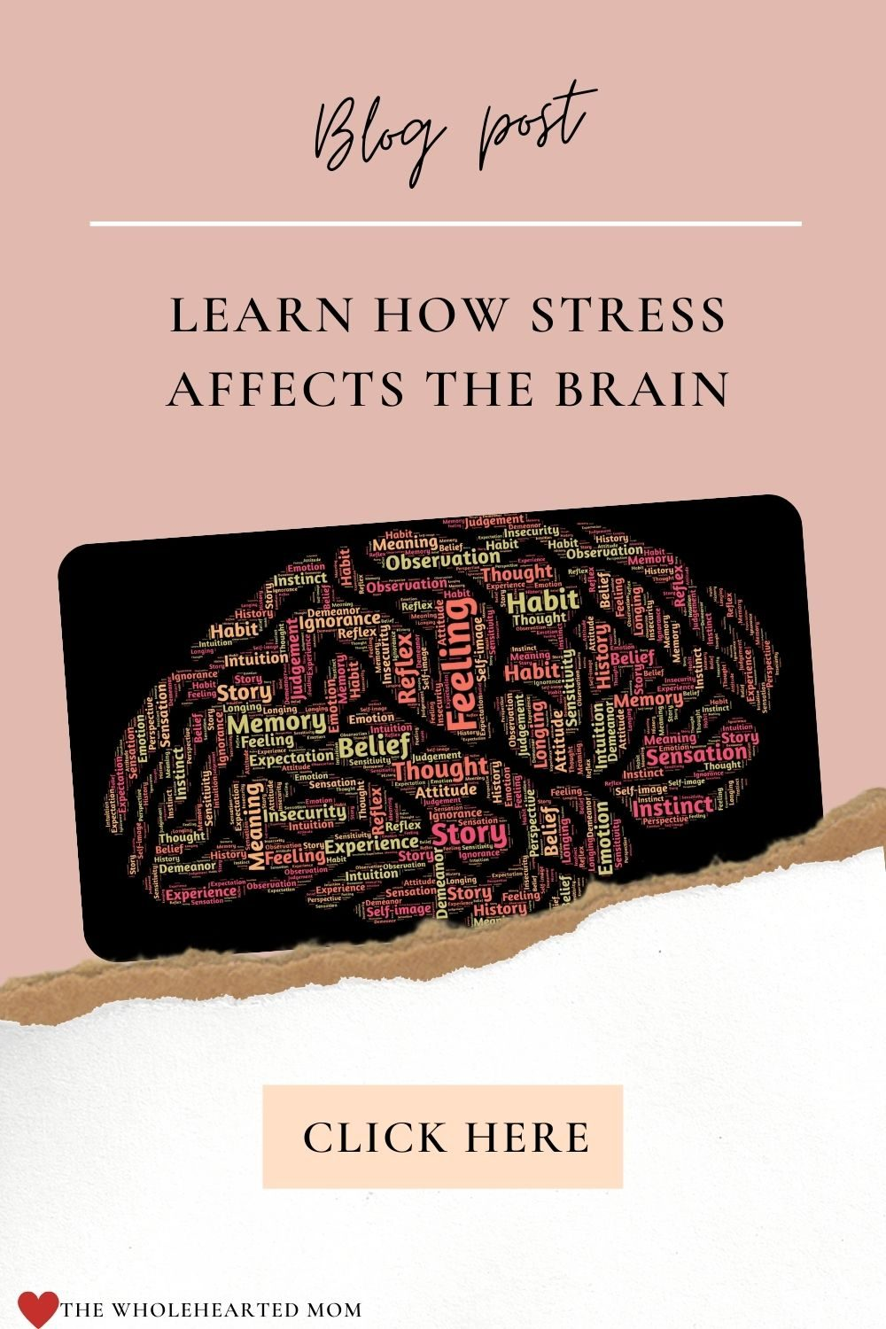 Learn how stress affects the brain